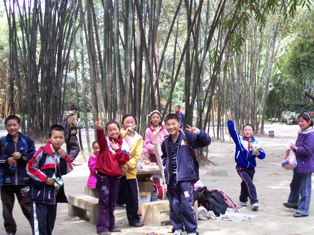 Bambuspark in China ID =